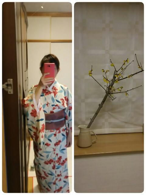 f:id:chubi-yumichi:20170210102828j:image