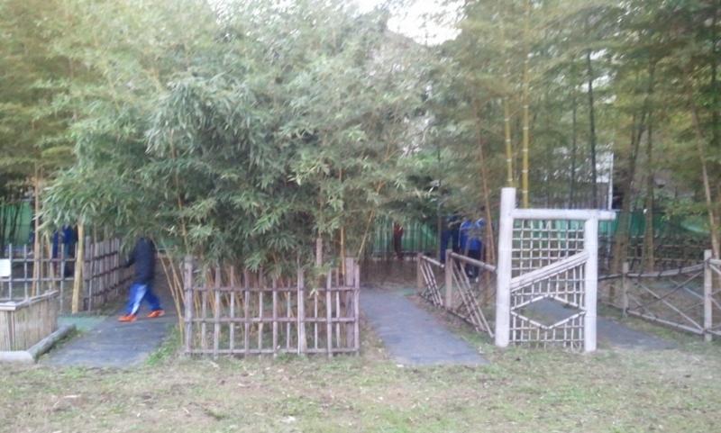 f:id:chuchus:20111127063507j:image