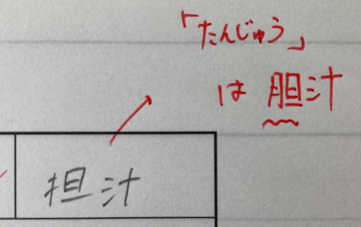 f:id:chugakubu:20210118143004j:plain