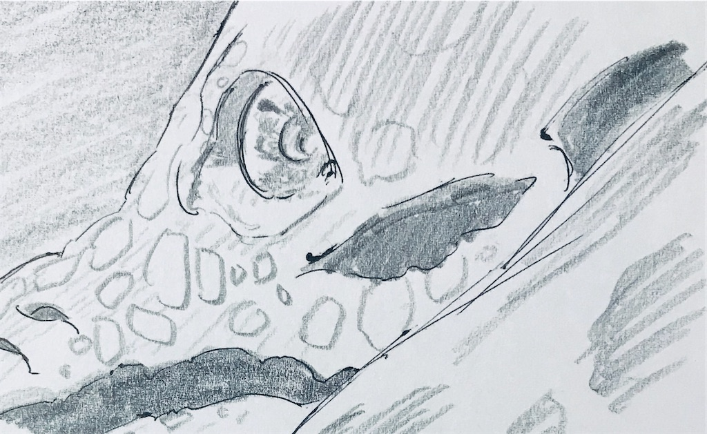 f:id:chukannsyoku:20200201112303j:image