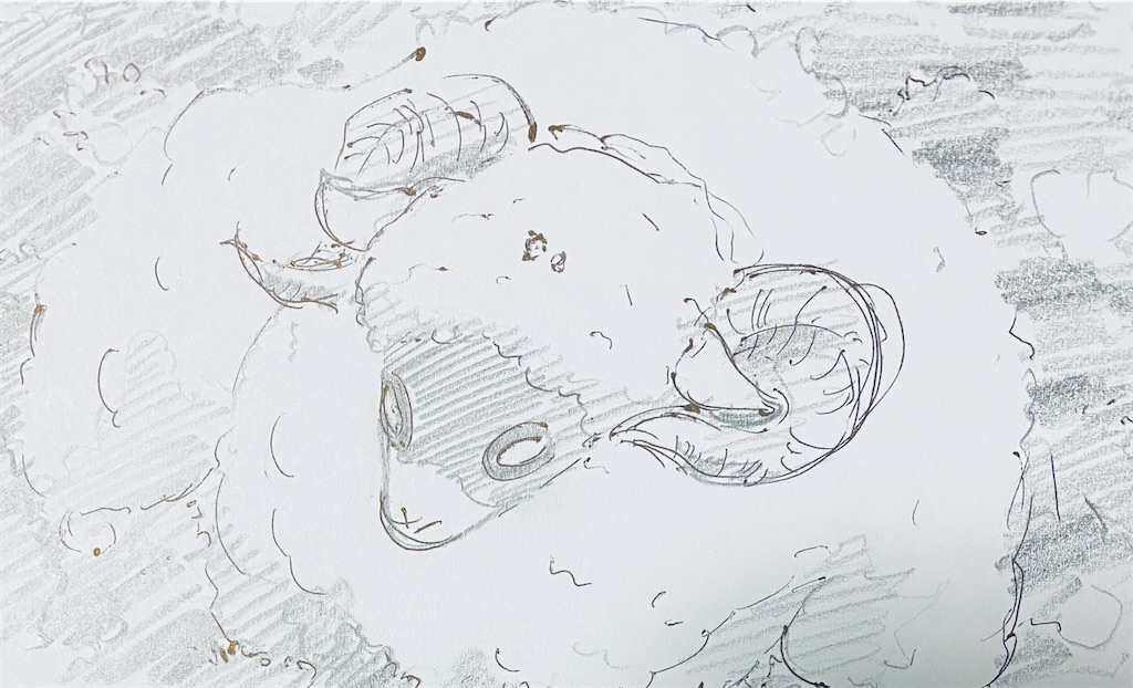 f:id:chukannsyoku:20210120165110j:image