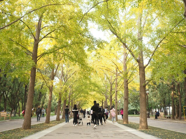 f:id:chunhua1223:20171027161016j:image