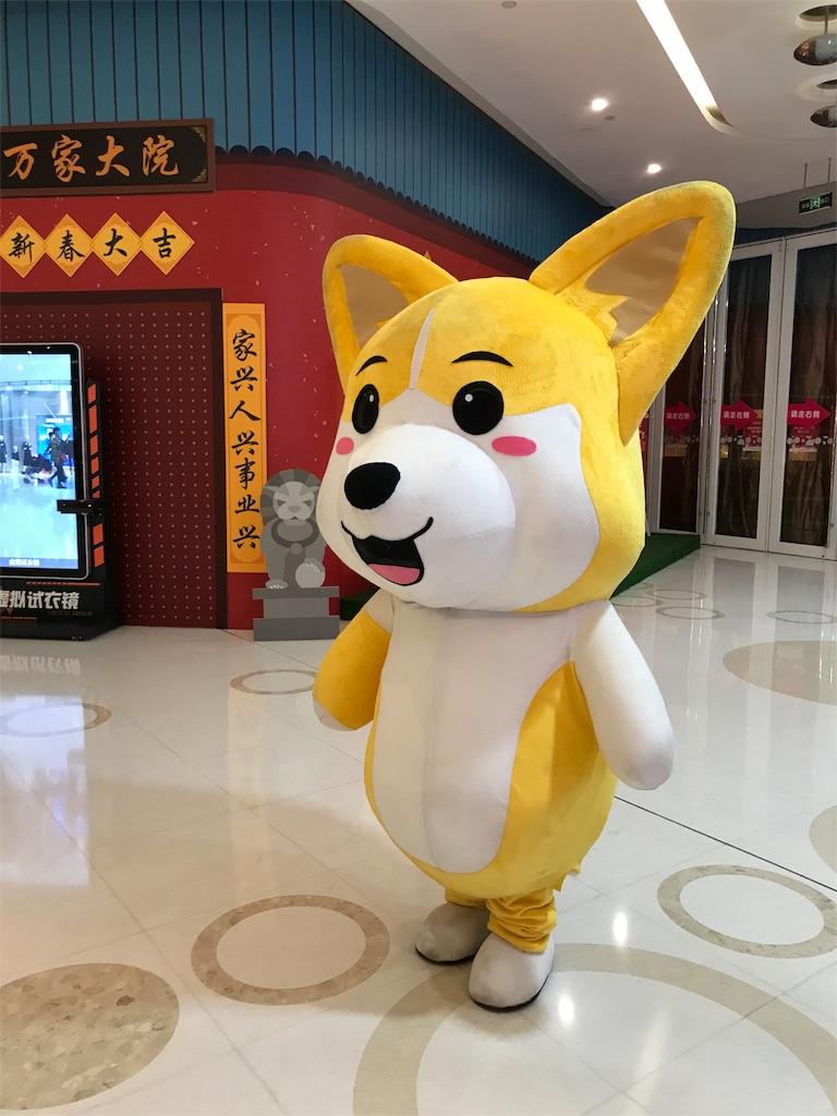 f:id:chunhua1223:20180213004403j:image