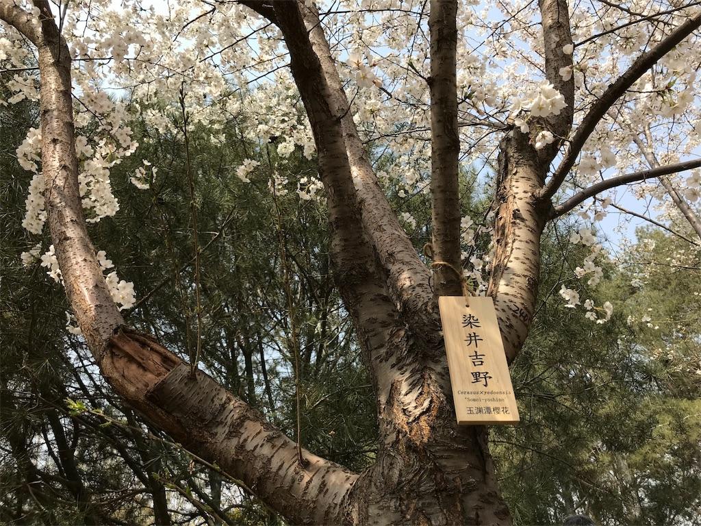 f:id:chunhua1223:20180404133345j:image