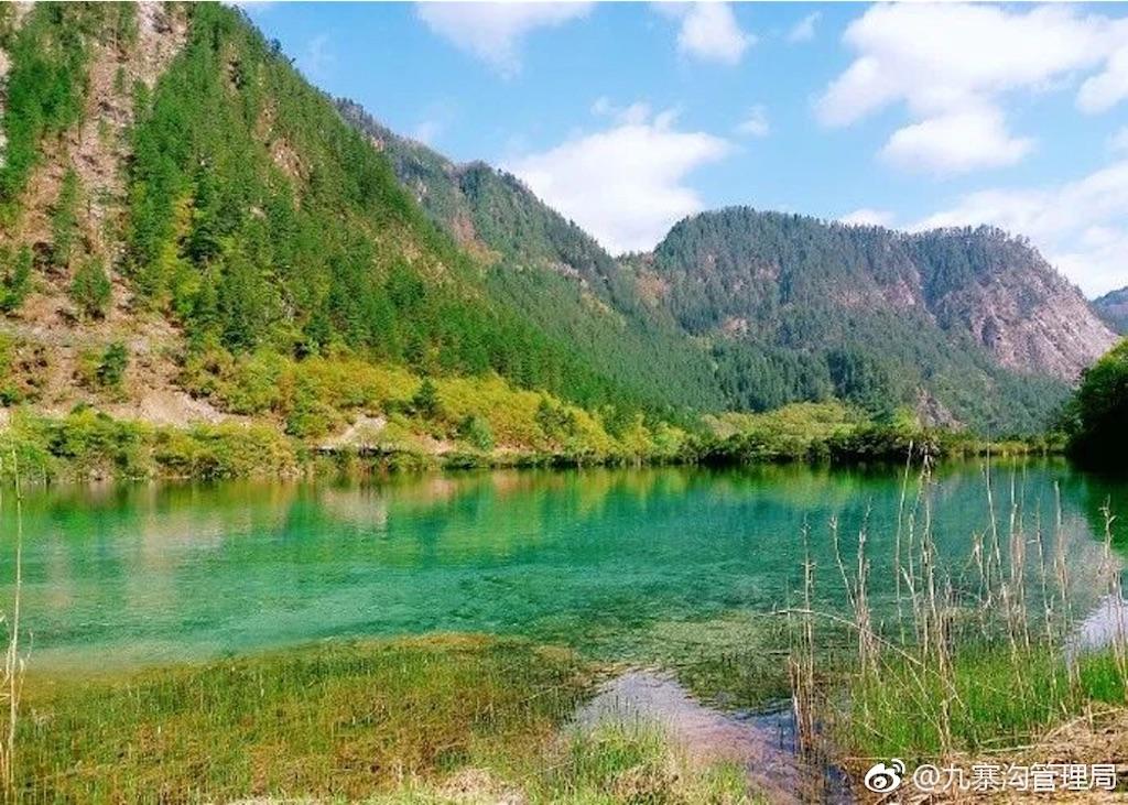 f:id:chunhua1223:20180522171540j:image