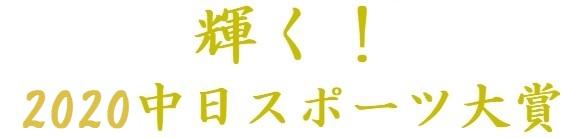 f:id:chunichi-wo-kangaeru:20201230200205j:plain