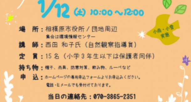 f:id:chuokurashinet:20181221184948p:plain