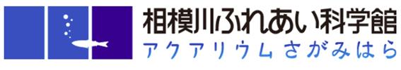 f:id:chuokurashinet:20200117072737p:plain
