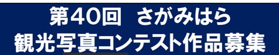 f:id:chuokurashinet:20201015095015p:plain