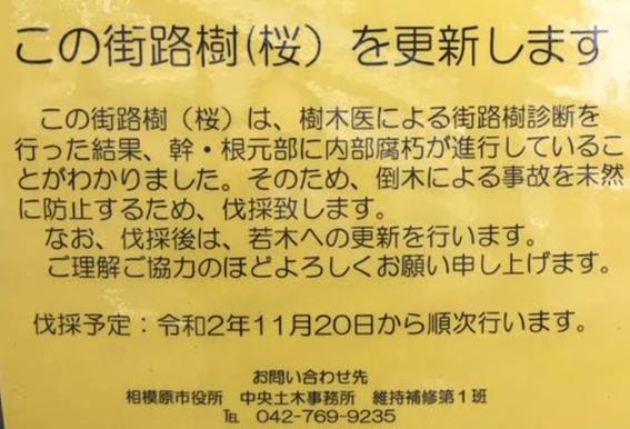 f:id:chuokurashinet:20201020175828p:plain