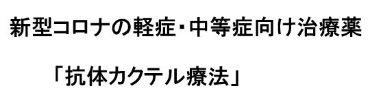 f:id:chuokurashinet:20210826032934p:plain