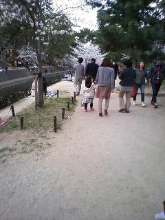 夙川上流2