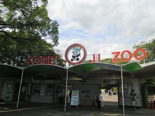 OZI ZOO