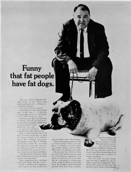 Funny that fat people have fat dogs.