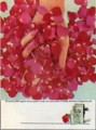[Yardley]We picked 3,000 fragrant red rose petals to make one small bottle of Yardley Red Roses Cologne f