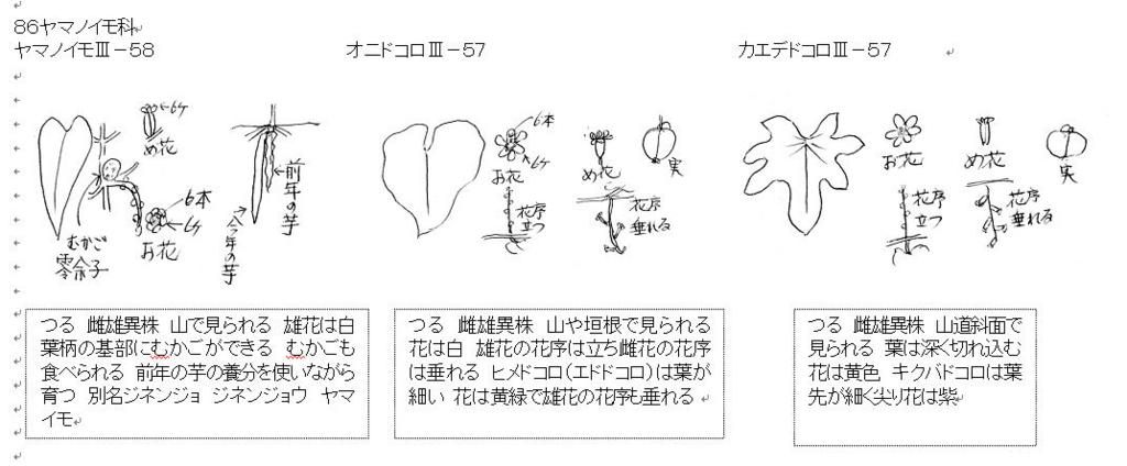 f:id:chuumeikun:20160703001553j:plain