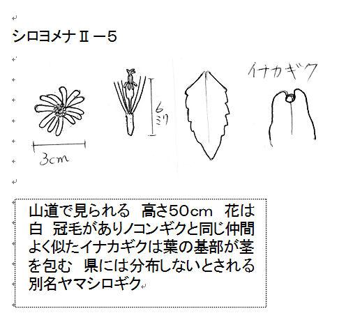 f:id:chuumeikun:20160716051818j:plain