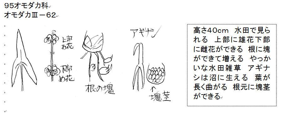f:id:chuumeikun:20160717043907j:plain