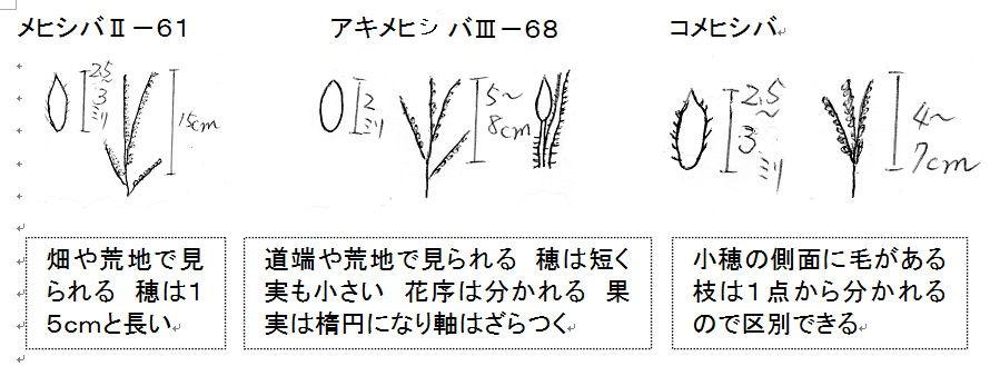 f:id:chuumeikun:20160728011352j:plain