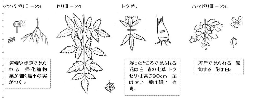f:id:chuumeikun:20160801024653j:plain