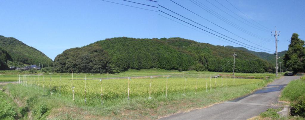 f:id:chuumeikun:20160812054450j:plain