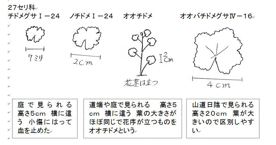f:id:chuumeikun:20160816060458j:plain