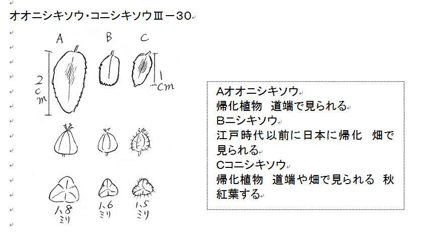f:id:chuumeikun:20160817035312j:plain