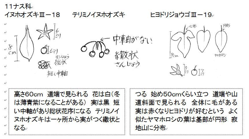 f:id:chuumeikun:20160818044010j:plain