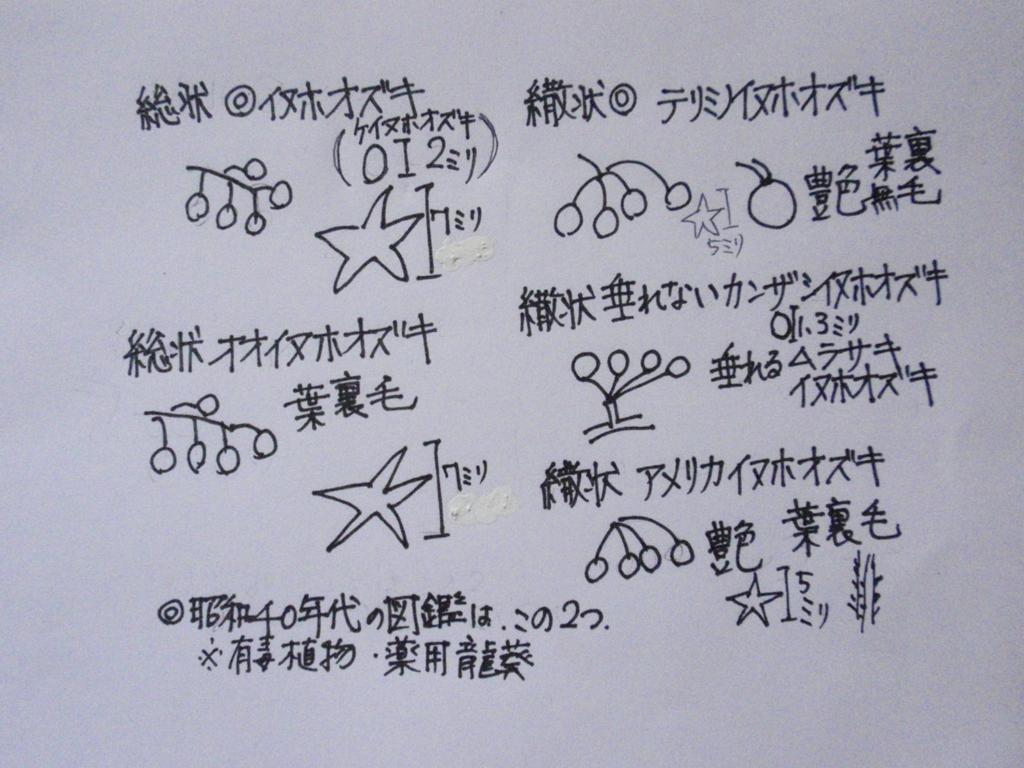 f:id:chuumeikun:20160818044911j:plain