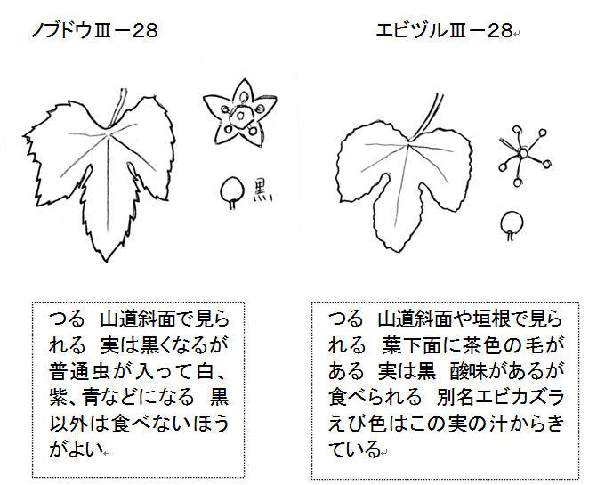 f:id:chuumeikun:20160821030856j:plain