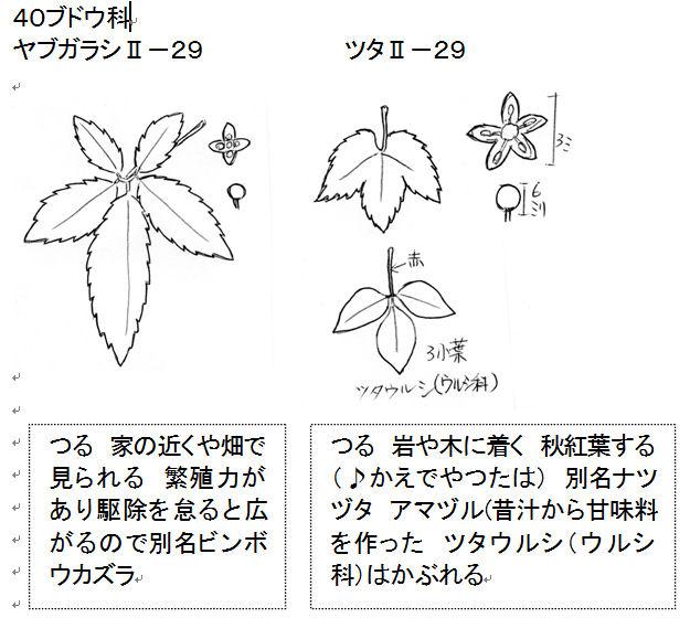 f:id:chuumeikun:20160822010127j:plain