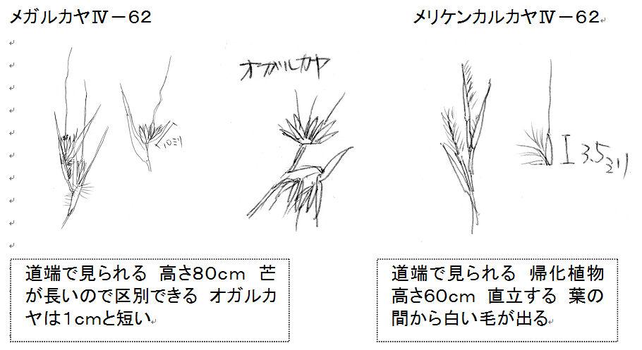 f:id:chuumeikun:20160823192732j:plain