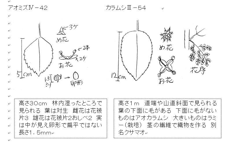 f:id:chuumeikun:20160831011037j:plain