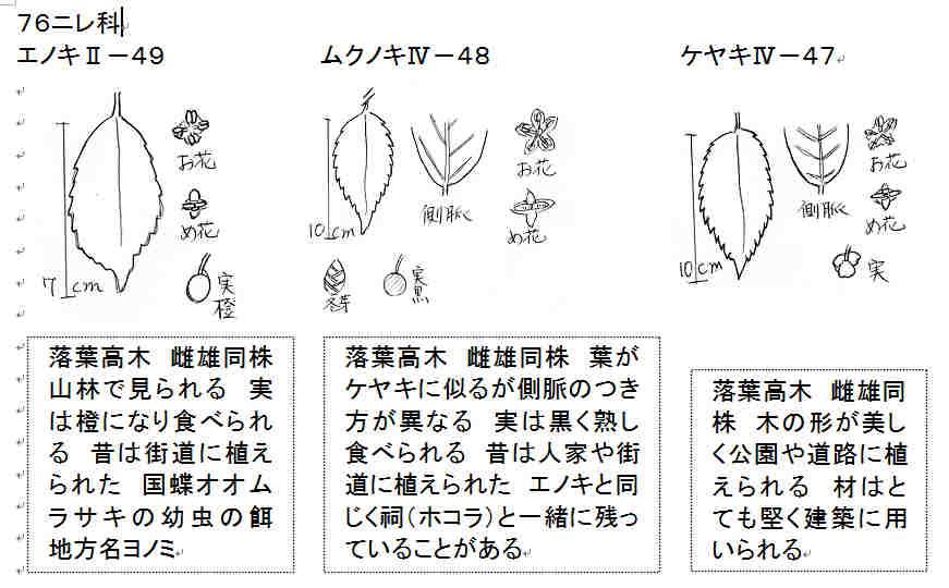 f:id:chuumeikun:20160908055023j:plain