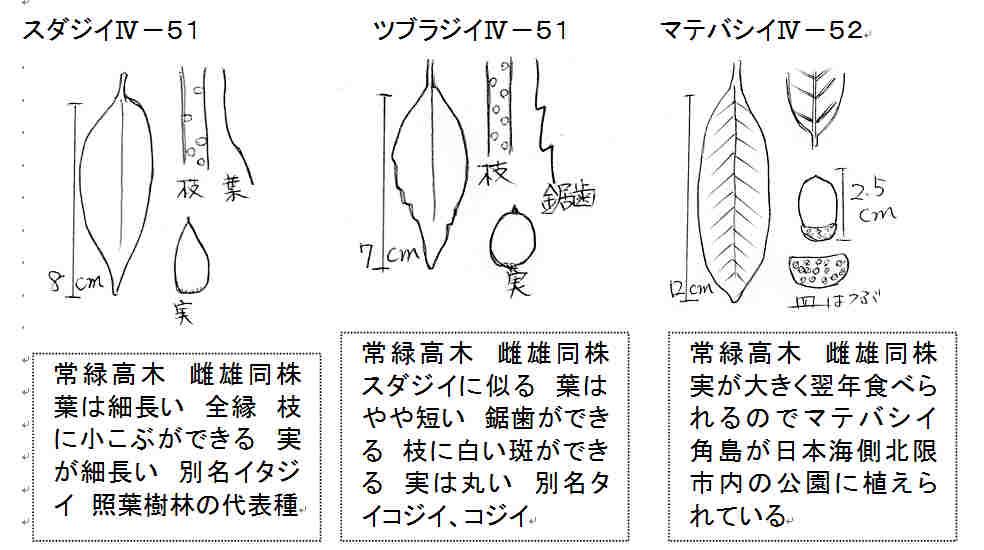 f:id:chuumeikun:20160912021243j:plain