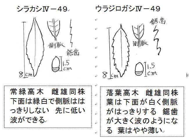 f:id:chuumeikun:20160915152237j:plain