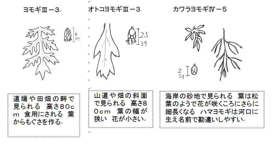 f:id:chuumeikun:20160919054739j:plain