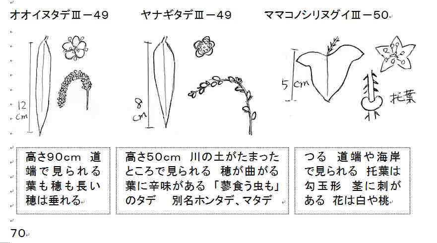 f:id:chuumeikun:20160926015131j:plain