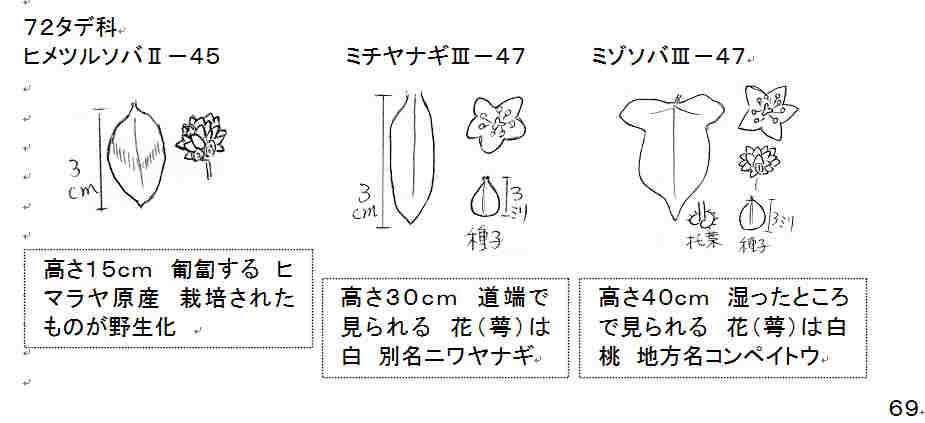 f:id:chuumeikun:20160927003824j:plain