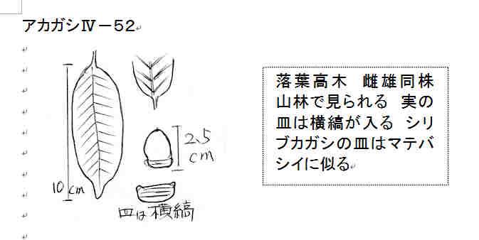 f:id:chuumeikun:20161001024543j:plain