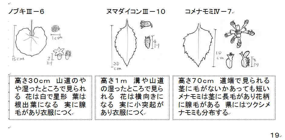 f:id:chuumeikun:20161010062044j:plain