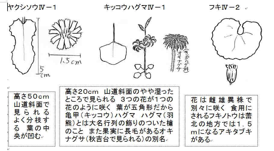 f:id:chuumeikun:20161027000905j:plain