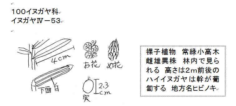 f:id:chuumeikun:20161106021644j:plain