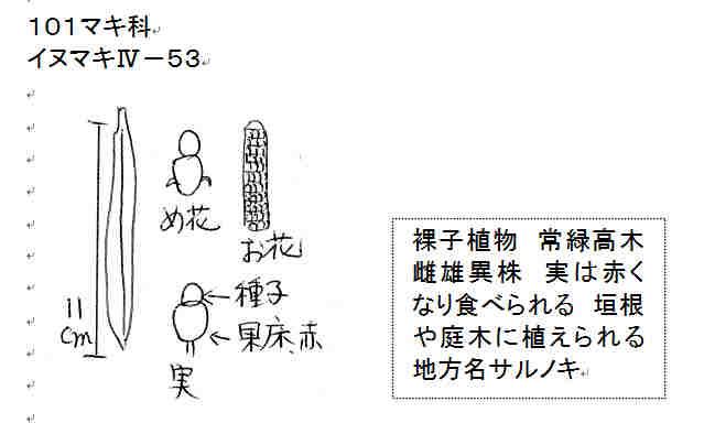 f:id:chuumeikun:20161106021703j:plain