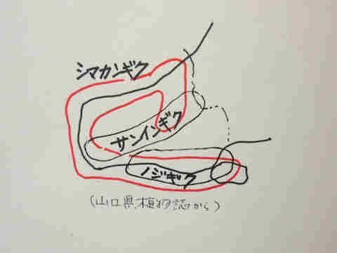 f:id:chuumeikun:20161109062751j:plain