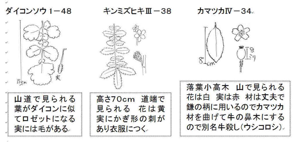 f:id:chuumeikun:20161122081451j:plain