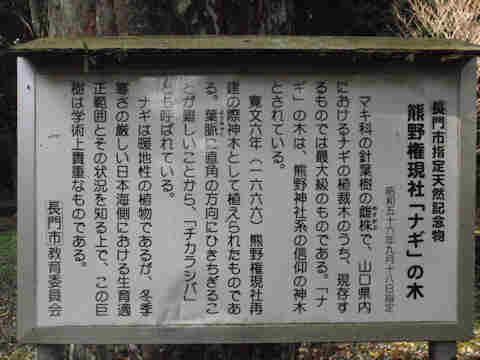 f:id:chuumeikun:20161123094642j:plain