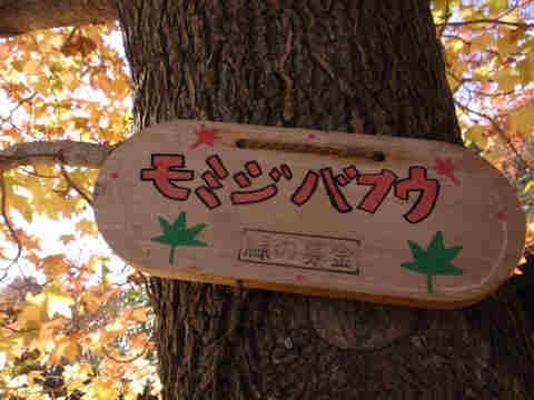 f:id:chuumeikun:20161124201137j:plain