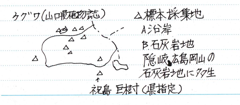 f:id:chuumeikun:20161206062657j:plain