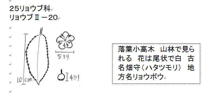 f:id:chuumeikun:20161208112720j:plain